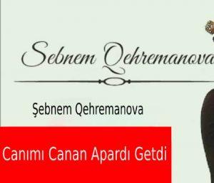 ebnem Qehremanova Colled Canımı Canan Apardı Getdi1 300x257 - دانلود آهنگ جدید شبنم قهرمانوا به نام جانیمی جانان آپاردی گتدی
