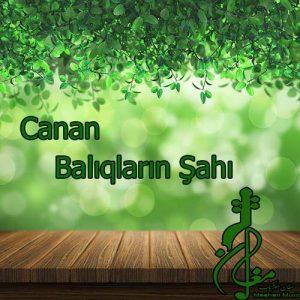 Canan – Balıqların Şahı 300x300 - دانلود اهنگ ترکی جانان به نام بالیغلارین شاهی