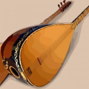 Divan 300x300 - دانلود آهنگ جدید مروه یاووز به نام اشرف بی
