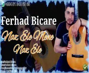 Ferhad Bicare – Naz Ele Mene 300x248 - دانلود آهنگ جدید فرهاد بیچاره به نام ناز اله منه ناز اله