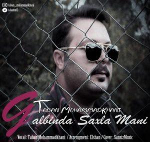 Taban Mohammadkhani Qalbinda Saxla Mani 300x285 - دانلود آهنگ جدید ترکی تابان محمدخانی به نام قلبینده ساخلا منی