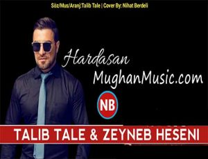 دانلود آهنگ ترکی طالب طالع و زینب حسنی به نام هارداسان